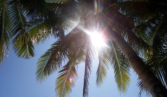 Ήλιος εναντίον πολλαπλής σκλήρυνσης | tovima.gr