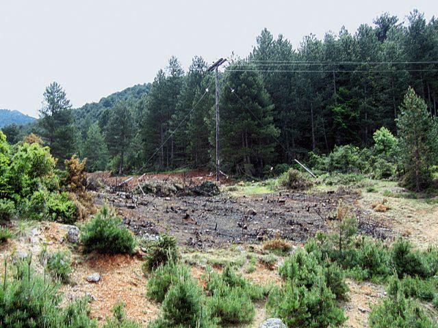 45.000 και πλέον υπογραφές για την απόσυρση νομοσχεδίου για τα δάση | tovima.gr