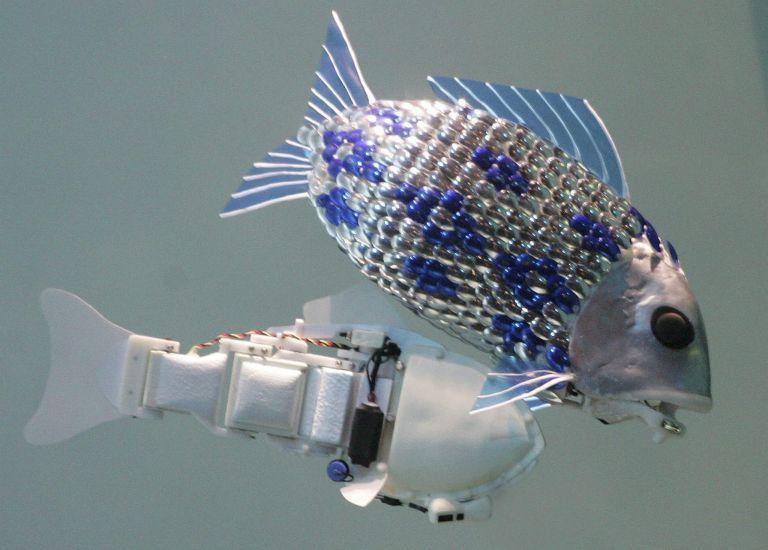 Ψάρια – ρομπότ φύλακες άγγελοι θαλασσίων ειδών | tovima.gr
