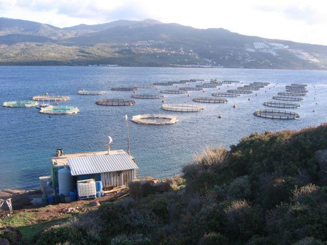 Στη Βουλή το νομοσχέδιο για τις υδατοκαλλιέργειες | tovima.gr