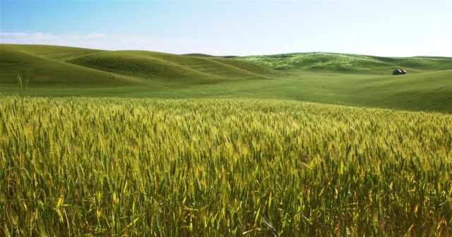 ΟΗΕ: Αύξηση τοξινών σε καλλιέργειες απ' τις ακραίες καιρικές συνθήκες   tovima.gr
