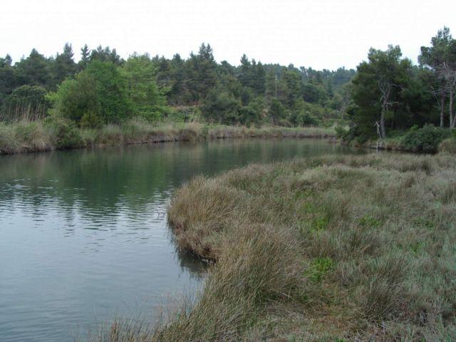 Δίχτυ προστασίας για μικρούς υγροτόπους και λίμνη Καστοριάς | tovima.gr