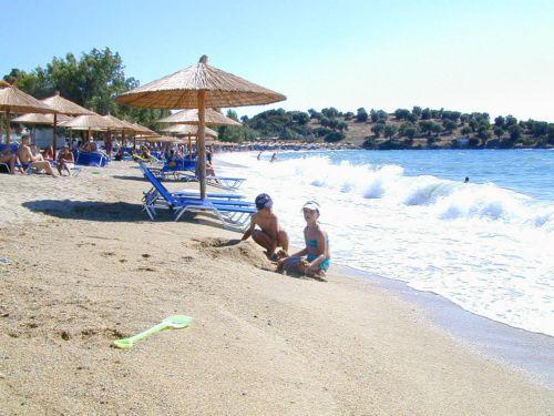 Συνεργασία ΣΕΤΕ – ΙΟΒΕ για τον τουρισμό | tovima.gr