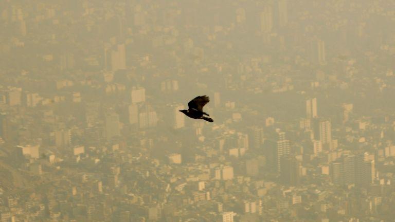 Η ατμοσφαιρική ρύπανση «εγκυμονεί» ανωμαλίες των εμβρύων | tovima.gr