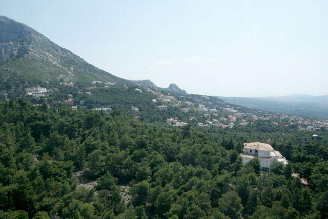 Ηπια ανάπτυξη στα δάση   tovima.gr