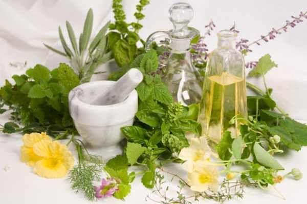Ημερίδα για «Τα Φαρμακευτικά Φυτά από την Αρχαιότητα μέχρι σήμερα» | tovima.gr