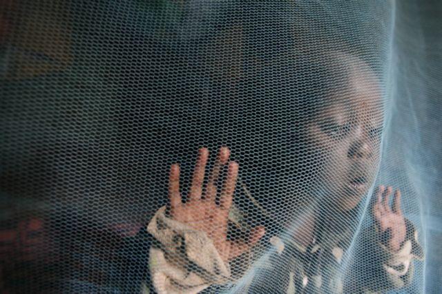 Το πρώτο εμβόλιο για την ελονοσία φτάνει σύντομα στην Αφρική | tovima.gr
