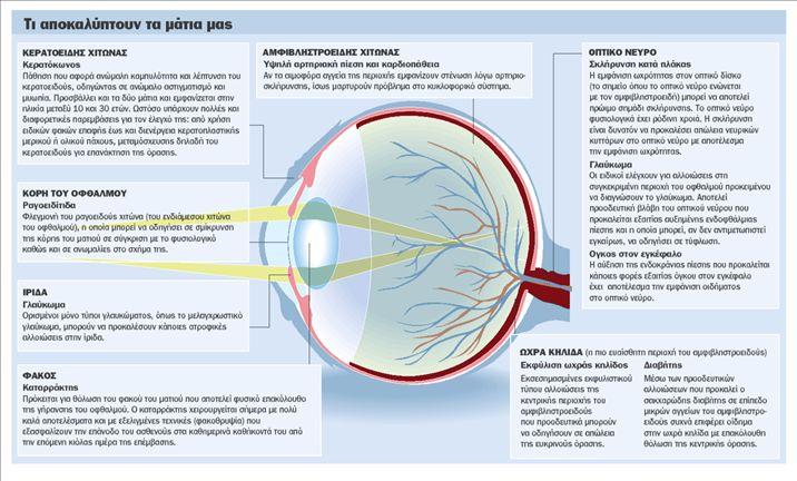 1a7c149850 Σύμφωνα με πρόσφατα στοιχεία της Ελληνικής Εταιρείας Γλαυκώματος ένας στους  πέντε Ελληνες δεν έχει επισκεφθεί ποτέ στη ζωή του οφθαλμίατρο ενώ το 40%  των ...