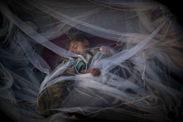 Δραστική μείωση των θανάτων από ελονοσία | tovima.gr