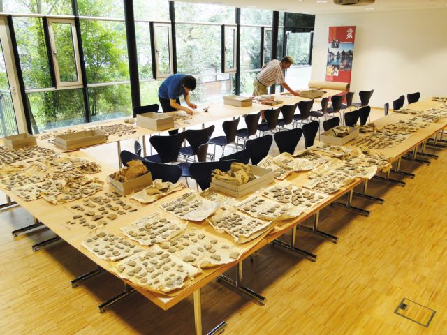 Επαναπατρισμός αρχαιοτήτων που κλάπηκαν από τους Ναζί | tovima.gr