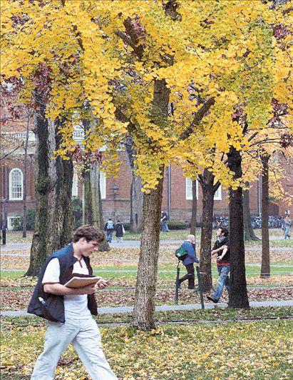 Ευρωπαϊκά πανεπιστήμια που ξεχωρίζουν | tovima.gr
