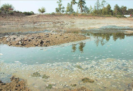 Τα ποτάμια γίνονται χωματερές | tovima.gr