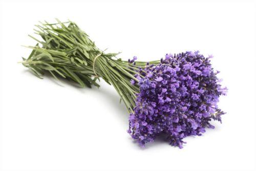 Το άρωμα μπορεί να γιατρέψει | tovima.gr