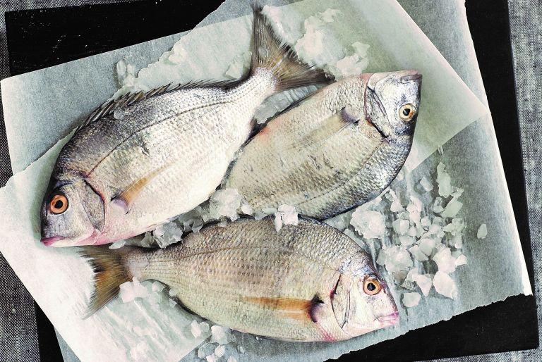 Ψάρι «ανοιξιάτικο»   tovima.gr