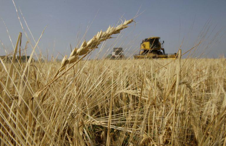 Hellastat: Παρατηρήθηκε αύξηση τιμής των γεωργικών προϊόντων το 2011 | tovima.gr