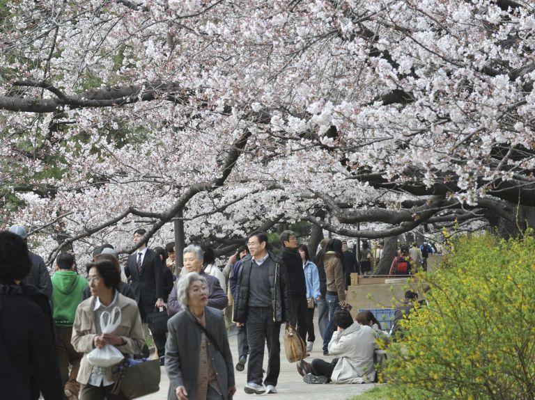 <b>Ιαπωνία</b> Η οικονομική ανέχεια… δημιουργεί υπεραιωνόβιους | tovima.gr