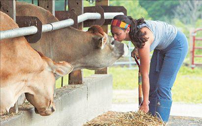 Αγροτικές εργασίες εναντίον κατάθλιψης | tovima.gr