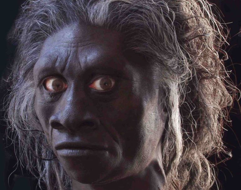 <b>Homo sapiens</b>Πριν από 70.000 – 80.000 χρόνια η μετανάστευσή τους από την Αφρική | tovima.gr