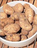 Μια πατάτα γεμάτη… πρωτεΐνες | tovima.gr