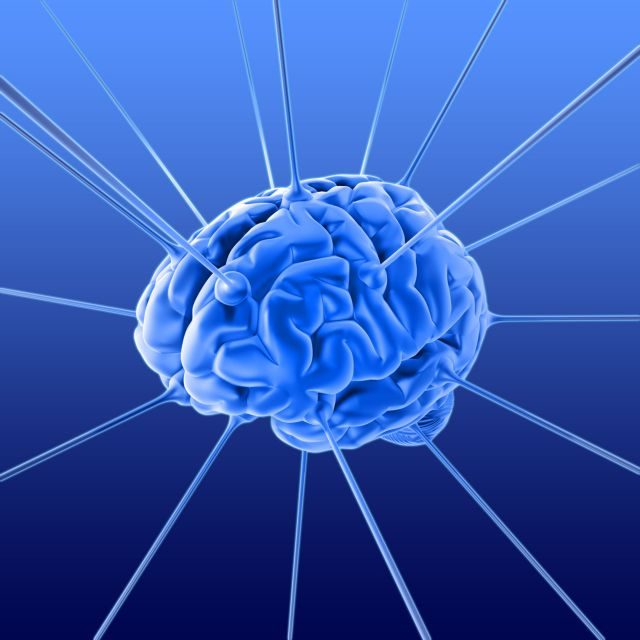 Η τεστοστερόνη «γεννά» χαρισματικό εγκέφαλο | tovima.gr