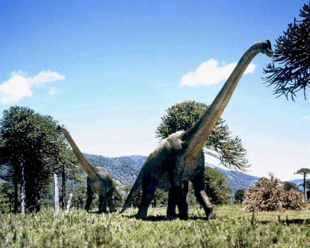 Δεινόσαυροι «χούβερ» σάρωναν τη γη | tovima.gr
