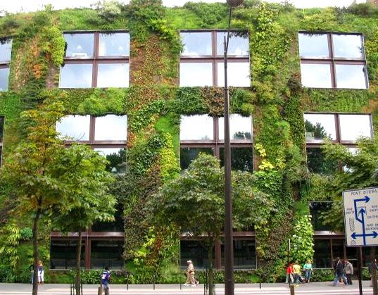 Φυτά εναντίον διοξειδίου του άνθρακα | tovima.gr