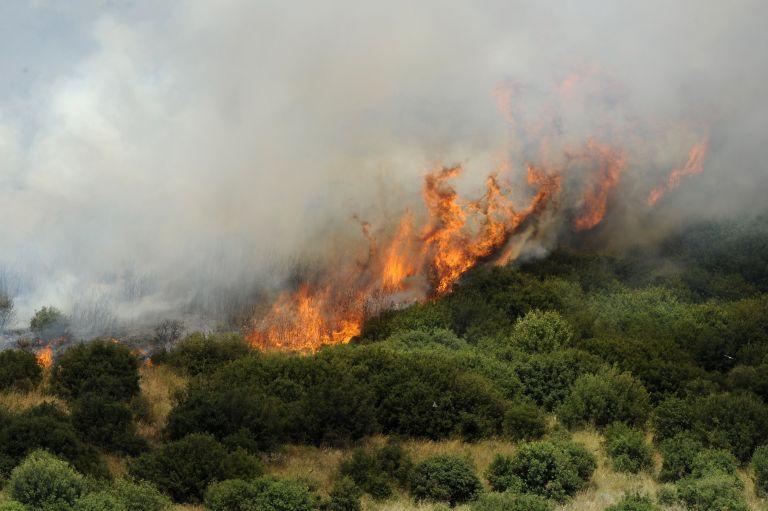Υπό έλεγχο τα περισσότερα πύρινα μέτωπα στη χώρα | tovima.gr