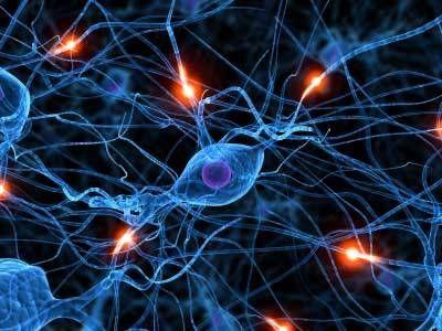 Βλαστικά κύτταρα ενάντια στη σκλήρυνση κατά πλάκας | tovima.gr
