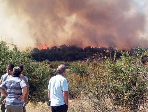 Σε κατάσταση εκτάκτου ανάγκης η Λευκίμη Εβρου λόγω της πυρκαγιάς   tovima.gr