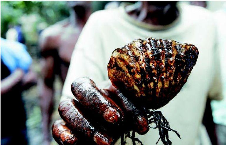 Πετρέλαιο  και αίµα  στη Νιγηρία | tovima.gr