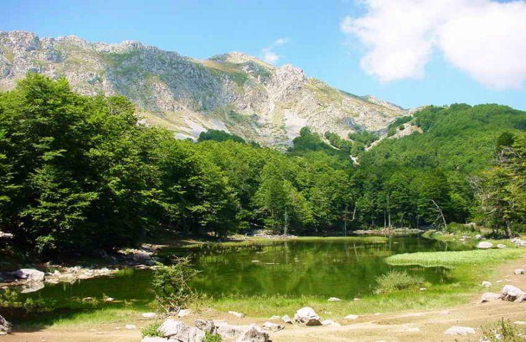 Βουλή : «Διπλός ο στόχος του Πάρκου Εθνικής Συμφιλίωσης Γράμμου» | tovima.gr
