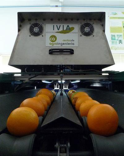 Μηχάνημα «βλέπει» τα σάπια φρούτα | tovima.gr
