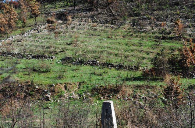 Αλβανία: Ιστορικό κοιμητήριο για τους έλληνες πεσόντες | tovima.gr
