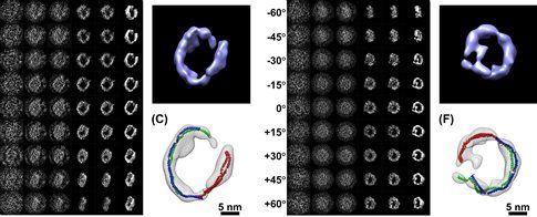 Οι πρώτες εικόνες μορίων 3D | tovima.gr