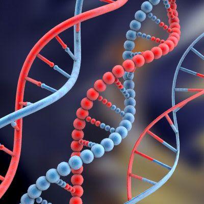 (Ξανά)γέννησαν τα μόρια της ζωής | tovima.gr