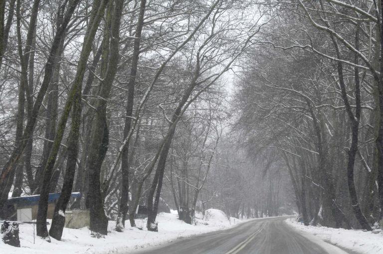 Κρύο και βροχές σε όλη τη χώρα – Στα «λευκά» η Εύβοια   tovima.gr