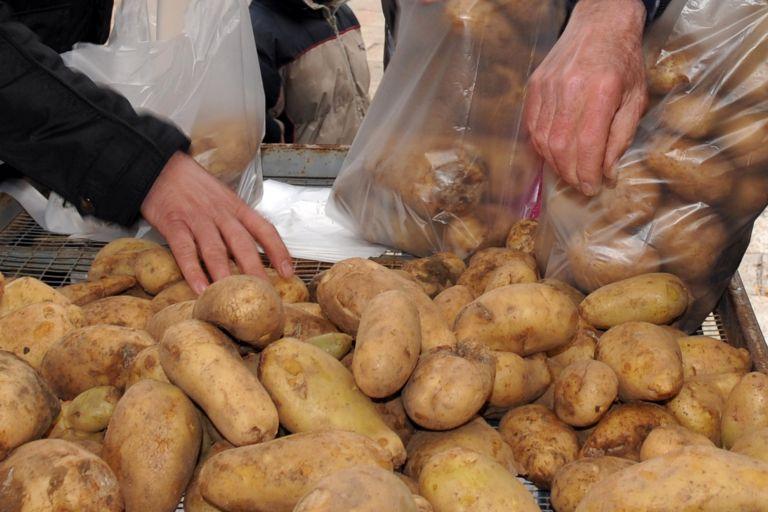 Κατάργησαν τους μεσάζοντες στις πατάτες | tovima.gr