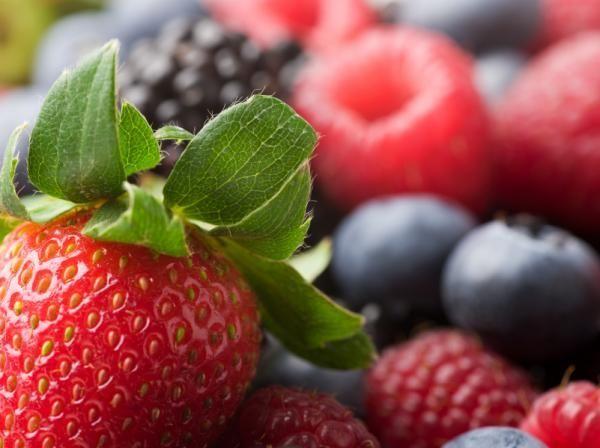 Μούρα και φράουλες εναντίον Πάρκινσον | tovima.gr