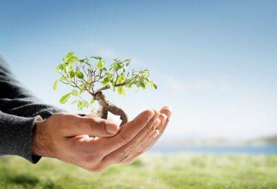 Παγκόσμια βιοποικιλότητα μείον 30%   tovima.gr