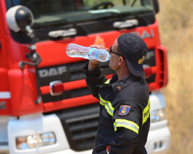 Πυρκαγιά καίει αγροτοδασική έκταση στα Βρέλια στη Φθιώτιδα | tovima.gr