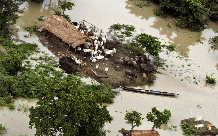 Ινδία: Δεκάδες νεκροί και δύο εκατομμύρια άστεγοι εξαιτίας μουσώνα | tovima.gr
