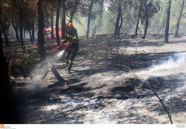 Πόσες εκτάσεις κάηκαν στις πυρκαγιές του Ιουλίου   tovima.gr