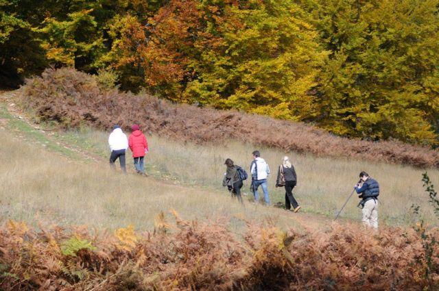 Νυμφαίο: Εξι διαδρομές στη φύση για όλα τα γούστα | tovima.gr