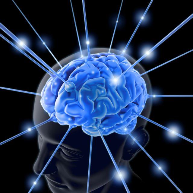 Γιατί ο εγκέφαλός μας είναι τόσο μεγάλος; | tovima.gr