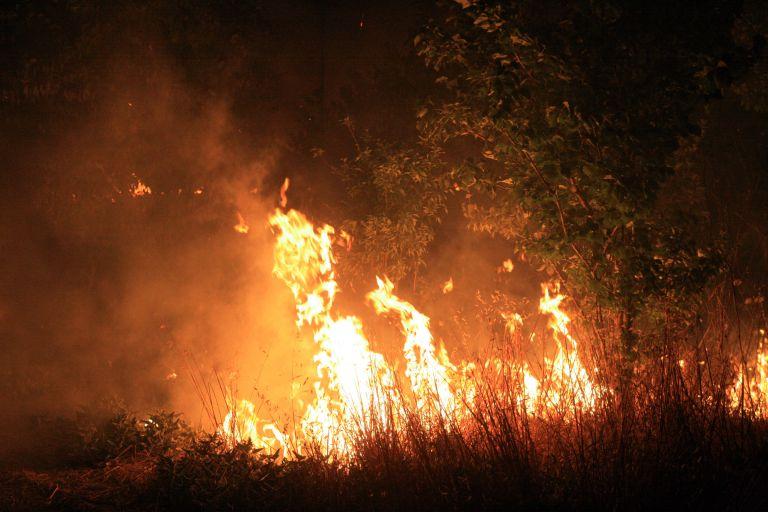Κύπρος: Εκκενώθηκε χωριό λόγω μεγάλης πυρκαγιάς   tovima.gr