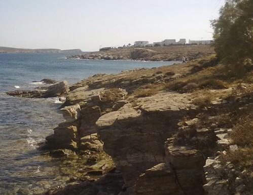 Στην Ελλάδα επιστρέφει η Μυρτώ που κακοποιήθηκε στην Πάρο   tovima.gr