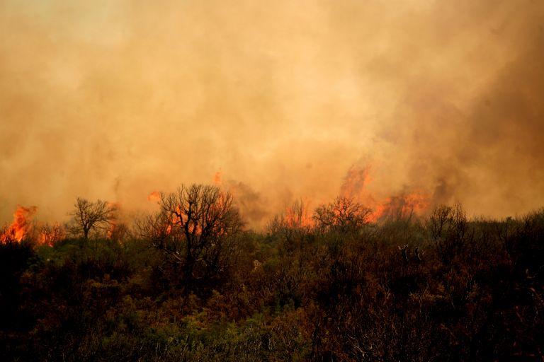 Μάχη με τις φλόγες στο Αγιον Ορος – Σε εξέλιξη το μέτωπο της Φθιώτιδας | tovima.gr
