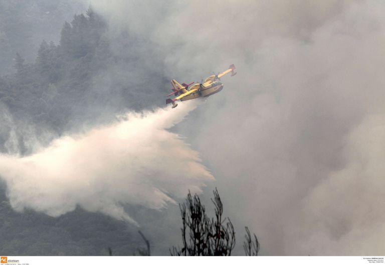 Αρχίζει τη Δευτέρα η καταγραφή των ζημιών στη Χαλκιδική | tovima.gr