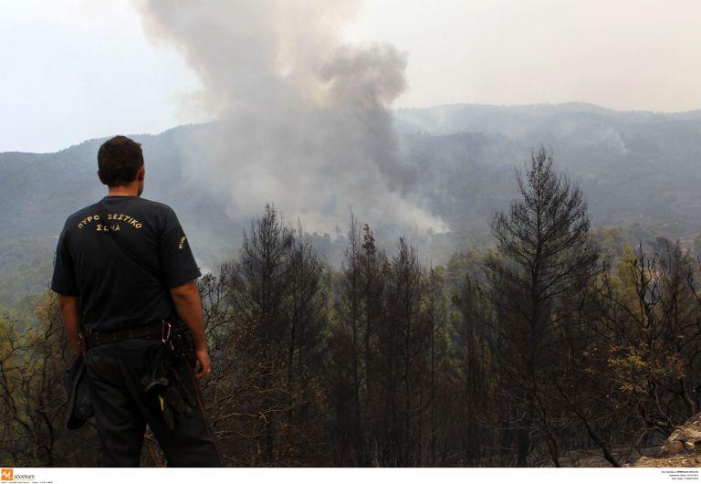Υπό μερικό έλεγχο η φωτιά στη Δροσιά Χαλκίδας   tovima.gr
