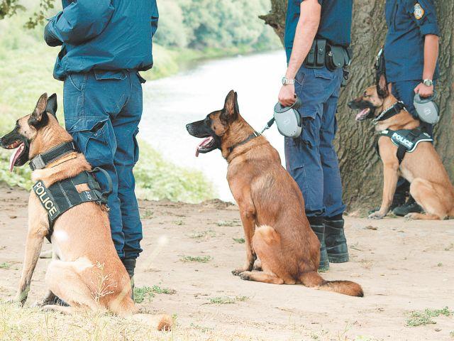 Άγριο έγκλημα στις Σπέτσες ερευνά η ΕΛΑΣ   tovima.gr
